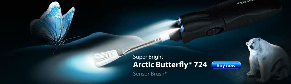 Arctic Butterfly 724